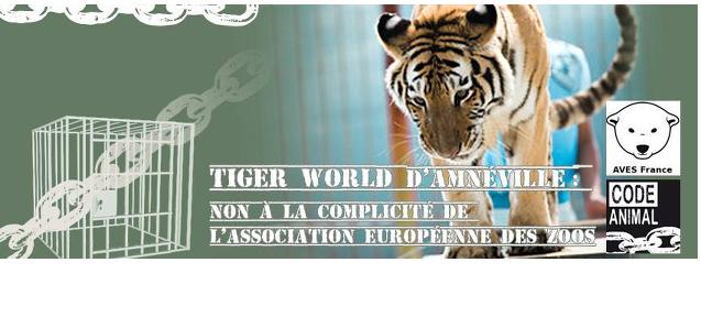 Tigerworld d'amnéville : Non à la complicité de l'association européeenne des zoos